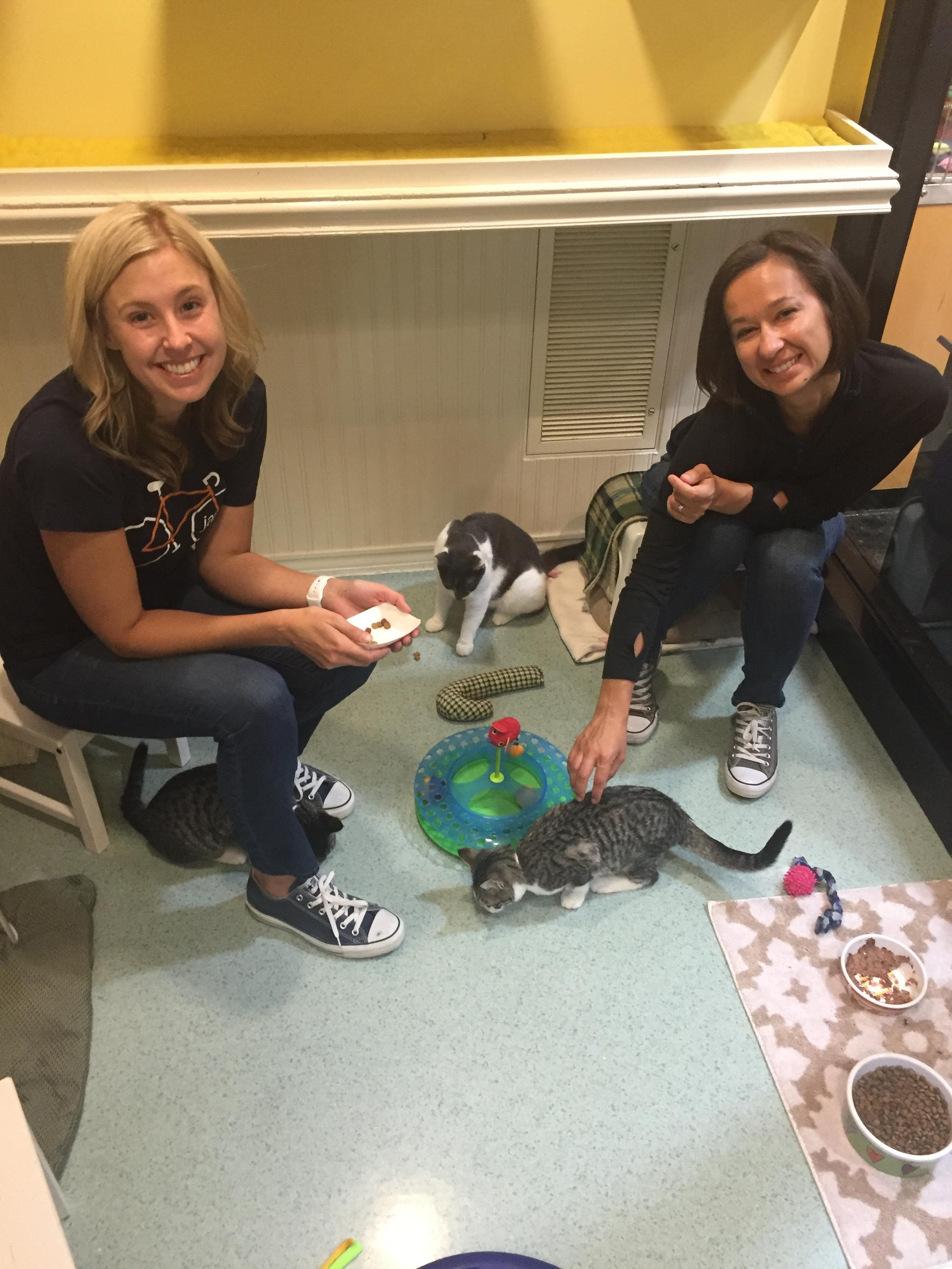 volunteer for the Oregon Humane Society